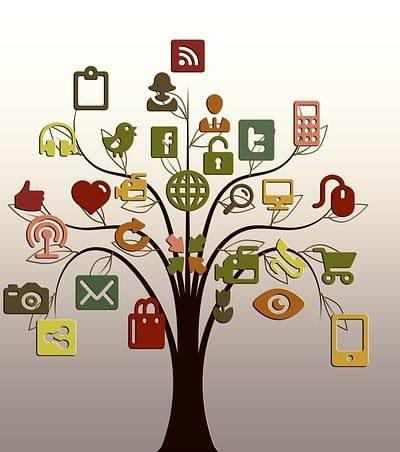 social media boast